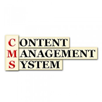 CMS website developments. Content management systems - the pros and cons.