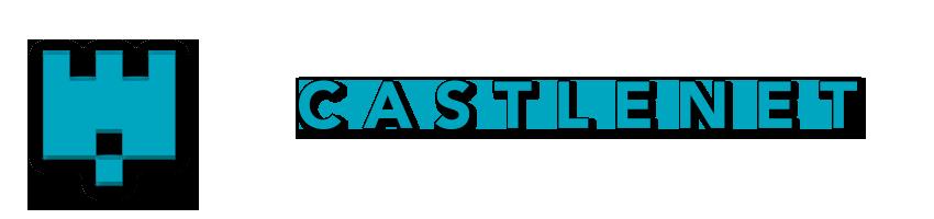 Castlenet website design wellington.